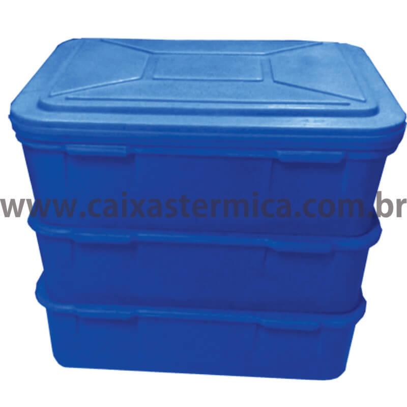 max box redonda